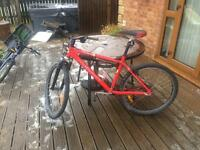 Muddy fox adult mountain bike
