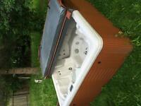 Moving Sale! 7 person Celebrity Hot Tub $2500