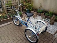 Adults Misson tricycle