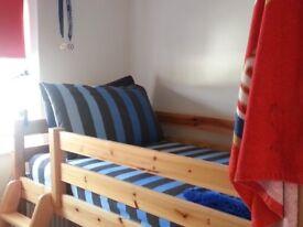 Midi Bed With Ladder & Slide