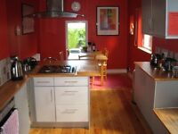 Large Room in Superb Shared House