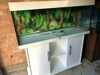 Juwel rio 180 white tropical/marine fish tank aquarium