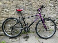 Giant Flash bike (24 wheel)