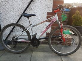 """Small Frame Raleigh Zero6 Mountain Bike 14"""" frame 26"""" wheel"""