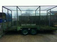 Twin axle caged trailer