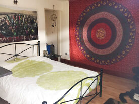 FULLY FURNISHED MODERNISED 1 BED FLAT - CITY CENTRE - £475 - AVAILABLE 15TH NOVEMBER