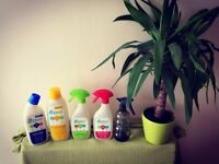 Hate cleaning? We love it! EcoCleaning