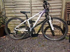 Teenager's Mountain Bike- Trek 4300
