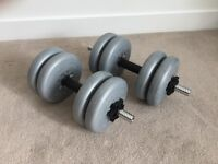 Two Dumbbell Bars and Weights