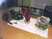 Fish Tank & Accessiories