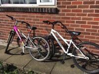 Girls bikes cheap