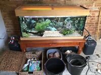 4ft fish tank x2 fluval filters + tropical fish