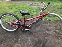 Trek kids bike trailer