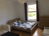 Lovely 1 Bedroom / Studio flat available February - BILLS INCLUDED - PROFESSIONAL LANDLORD