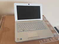 Sony mini Netbook 10.1 Inch Laptop, Intel Atom 1.66Ghz, 2GB RAM, Wifi, Windows XP Office