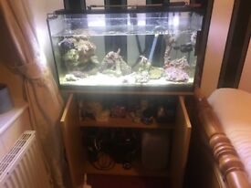 90 ltr marine tank with cabinet and all included