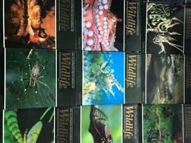 Illustrated encyclopaedia of wildlife