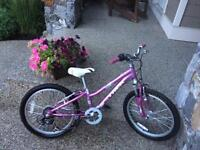 Trek girls bike