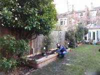 Handyman/Builder
