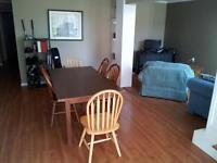 1 - 4 rooms available May 1st for summer.