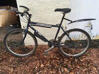 Selling Dawes mountain bike