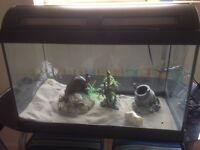 Fish Tank 37.5L