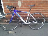 Apollo TDF 02 road bike 14 speed