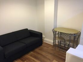 Furnished Studio Flat to rent Meadfoot Area. Includes all bills.