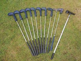Yonex Super ADX 200 irons, Ping woods, rake, putter, bag, accessories