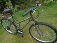 ladies gt mountain bike