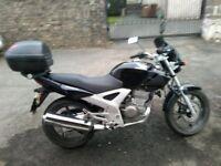 Honda CBF 250 motorcycle