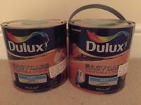 Nutmeg Cluster Dulux Easy Care paint 2.5litre x2 £30