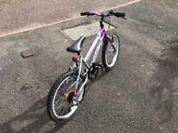Girl's 20 inch wheel bicycle