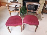 Pair of late victorian chairs.