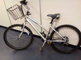 Ladies Dawes Saratoga Bicycle