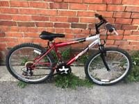 """Boys 24"""" Wheel Mountain Bike. Fully Serviced, Free Lock, Lights, Delivery"""