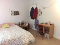 SPACIOUS DOUBLE BED, lovely flatshare, NORTH london 2 mins to overground