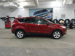 2014 Ford Escape SE SE 4WD