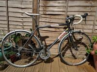 Genesis Equilibrium 10 (56cm) Bike for Sale