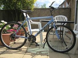 15 speed adult bike for £50