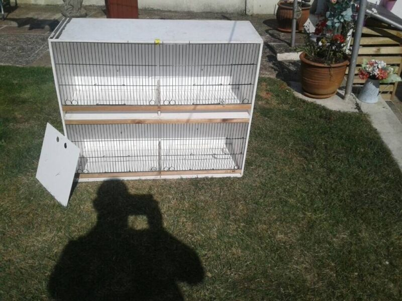 Canary breeding cage for sale  Dover, Kent