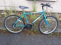 Raleigh Men Bike with 26 inch wheel