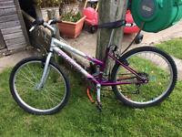 3 girls bikes for sale