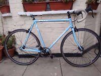 Gary Fisher Singlespeed/Fixie bike