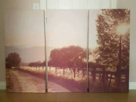 Large 3 piece picture
