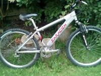 Saracen x-ile jump bike