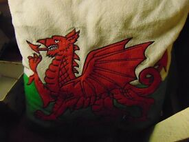 four wales cushions,,embroided dragon,,,stunning for car /caravan or home.quality