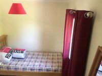 Stunning newly decorated single room to rent