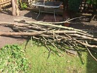 Free firewood for stove/chimenea/open fire