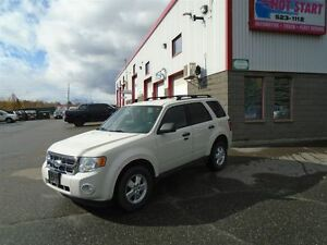2010 Ford Escape XLT Automatic 3.0L